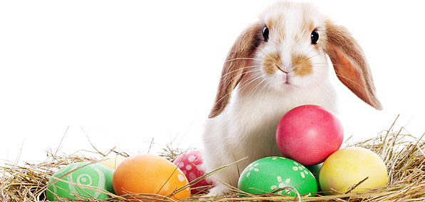 Easter Office Hours