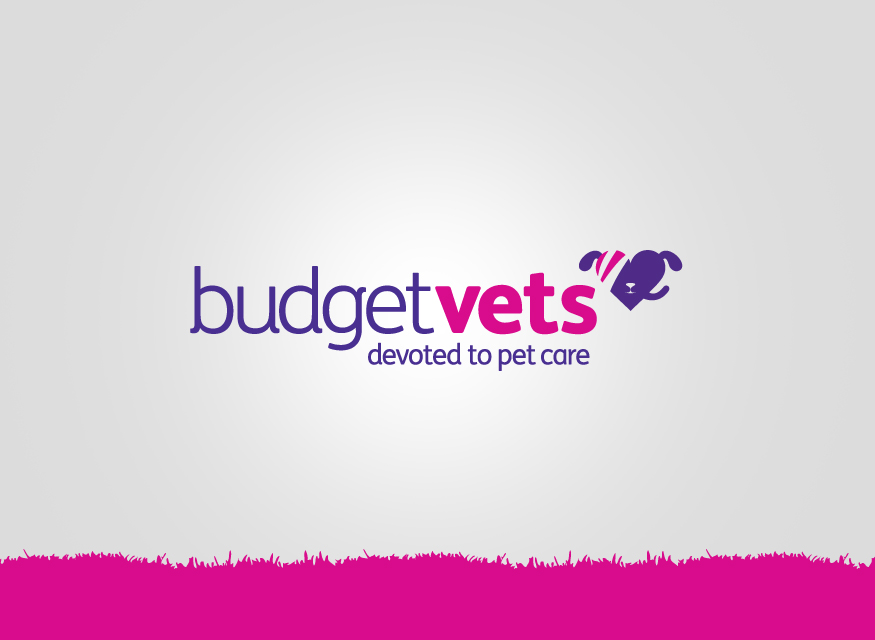 Budget Vets Come To Brackla Triangle