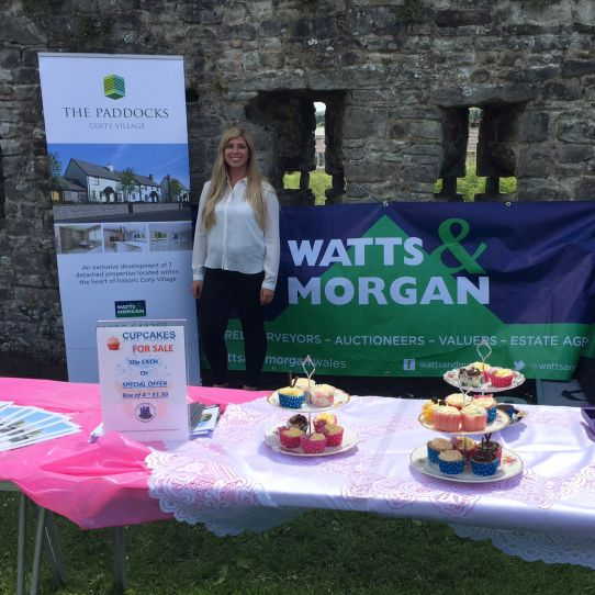 A Great Day at Coity Fete