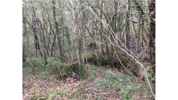 <strong>LOT 13: </strong>Approx 0.52 Acres of Land at Llety Brongu, Maesteg, CF34 0EB