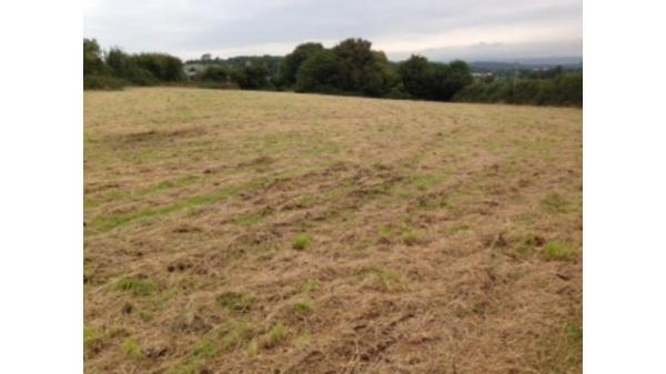 <strong>LOT 15: </strong>Approx. 2.89 acres of land off Llanmihangel Road, Llanblethian, Cowbridge, Vale Of Glamorgan, CF71 7