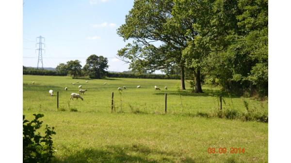 <strong>LOT 23: </strong>Approx. 5.77 acres of land part of Oakways Farm, Peterston Super Ely, Vale Of Glamorgan, CF5 6NE