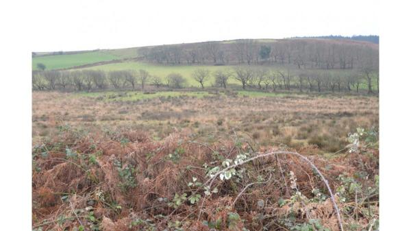 <strong>LOT 6: </strong>Approx. 17.89 acres of Land at Penycastell Farm, Bryn, Port Talbot, SA13 2PY