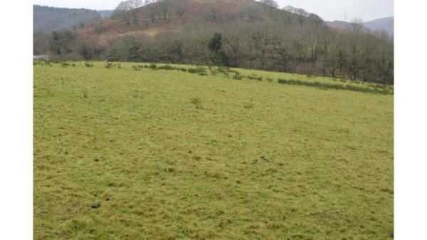 <strong>LOT 8: </strong>Approx. 5.83 acres of land at Penycastell Farm, Bryn, Port Talbot, SA13 2PY