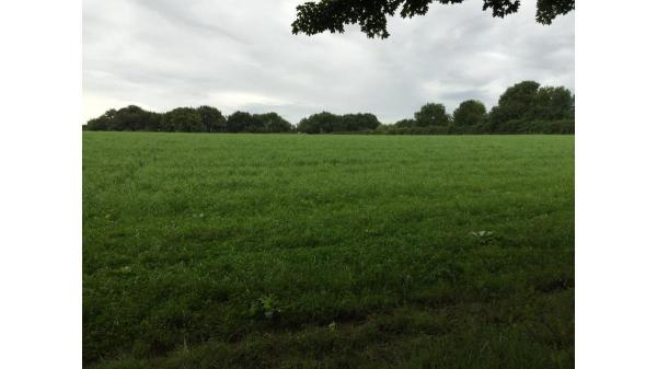 <strong>LOT 7: </strong>Approximately 4.92 acres of land at St Hilary, Vale of Glamorgan,  CF71 7DT