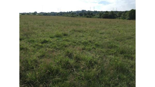 <strong>LOT 8: </strong>Approximately 29.38 acres of Land at Aberthin Lane, Cowbridge, Vale of Glamorgan, CF71 7LD