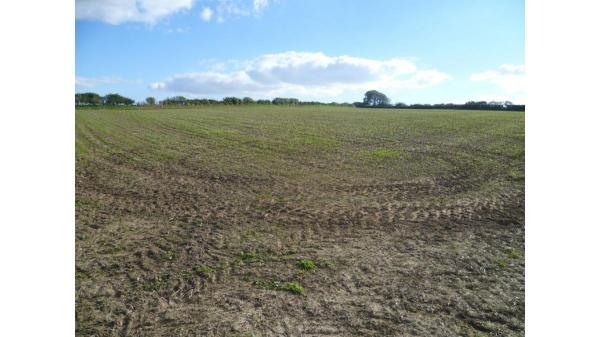 <strong>Lot 6: </strong>Approximately 3.02 acres of Land, Llandow, CF71 7NZ