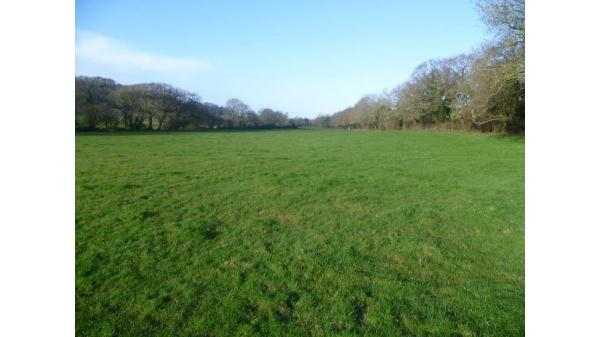 <strong>Lot 17: </strong>Lot 17 Approximately 20.46 acres of Land, Michaelston Le Pit, Near Dinas Powys, CF64 4HP