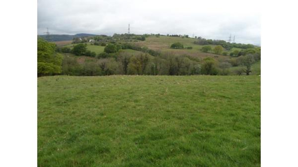 <strong>LOT 3: </strong>LOT 3, Approx. 19.56 Acres of Pasture Land and Woodland at Cilfynydd, Near Llanfabon