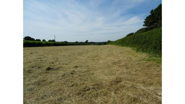 <strong>LOT 1: </strong>LOT 1, Approx. 3.18 Acres of Land at Llandow